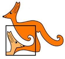 Organizacja ''Kangura''